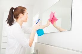 Sanitärhygiene
